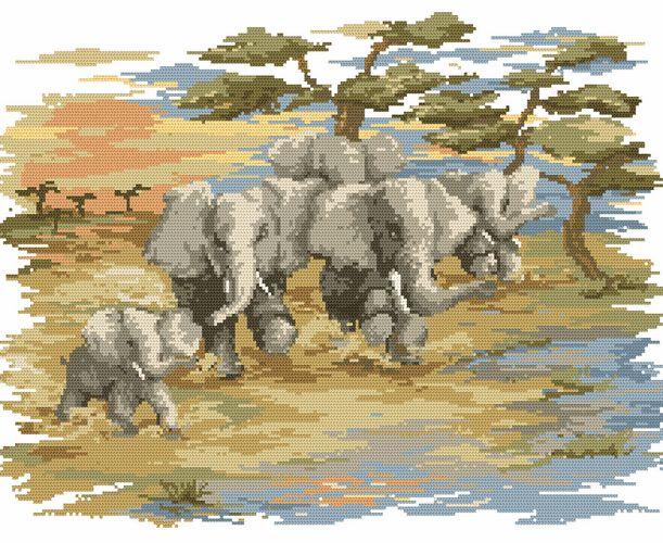 Pędzące słonie - B. Sikora