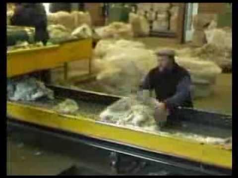 TRABAJOS Y SECTORES DE PRODUCCIÓN. Circuitos productivos: La lana.