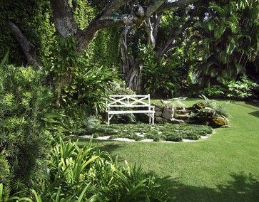 17 best images about ideas for a prayer garden on pinterest for Prayer palm plant