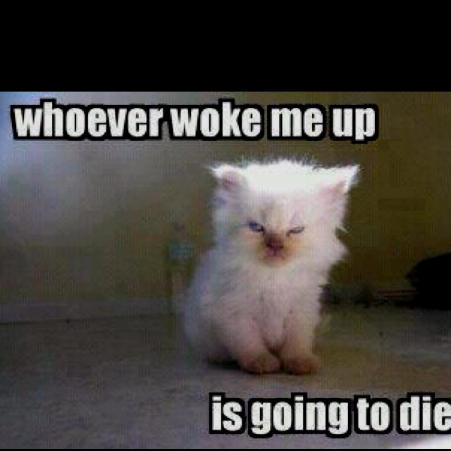 Me in the mornings