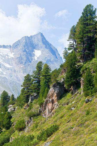 Zillertaler Alps, Tyrol, Austria
