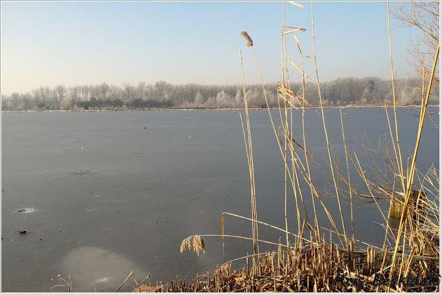 szlaki i bezdroża: Miechowice - pierwszy dzień zimy