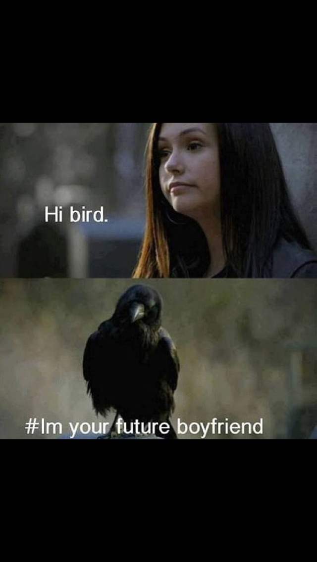 Cause Damon IS the crow in the books. He can also turn into a black wolf. Stefan can turn into a hawk. And Katherine a white tiger.