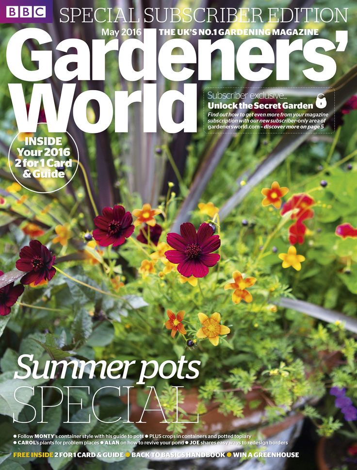 Garden Magazines Free 86 best magazine covers images on pinterest gardening magazines may 2016 montys terracotta pot contains phormium bidens cosmos and tropaeolum photo gardening magazinesgardening sisterspd