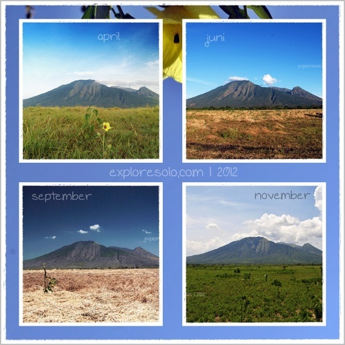 Baluranexploresolocommunity:    Baluran National Park, season to season, East Java, Indonesia.
