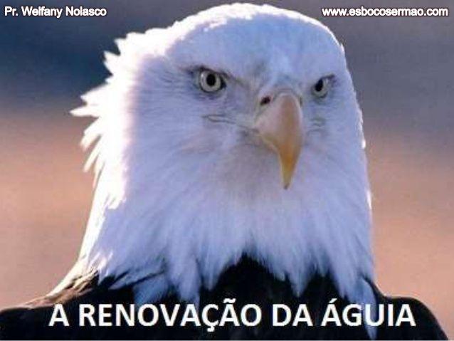 A renovação da águia [www.esbocosermao.com] by Pr. Welfany Nolasco Rodrigues via slideshare