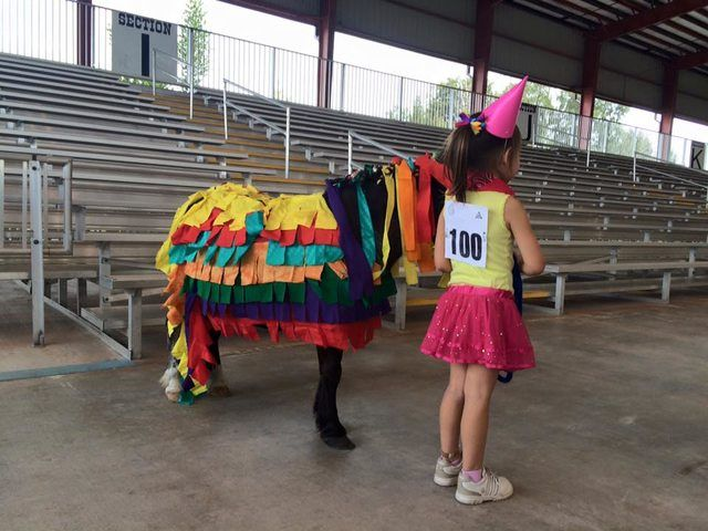 My 4-year-old daughter and our miniature horse dressed as a pinata and birthday girl for a costume contest - Imgur