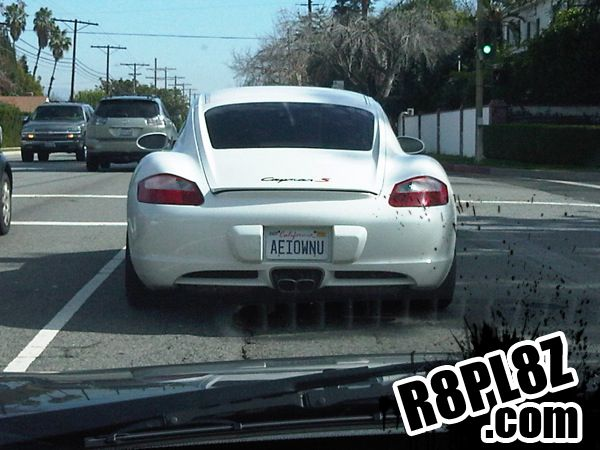 Best Licence Plate Check Ideas Only On Pinterest License