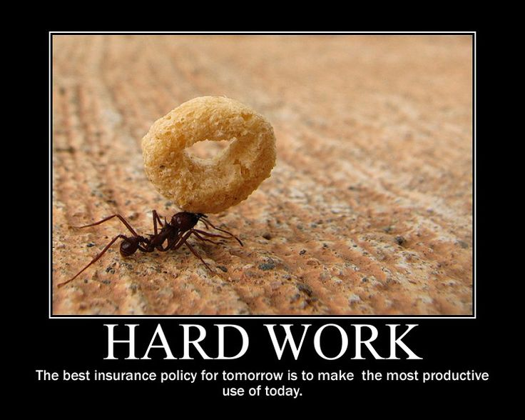 Funny Quotes about Work ethics