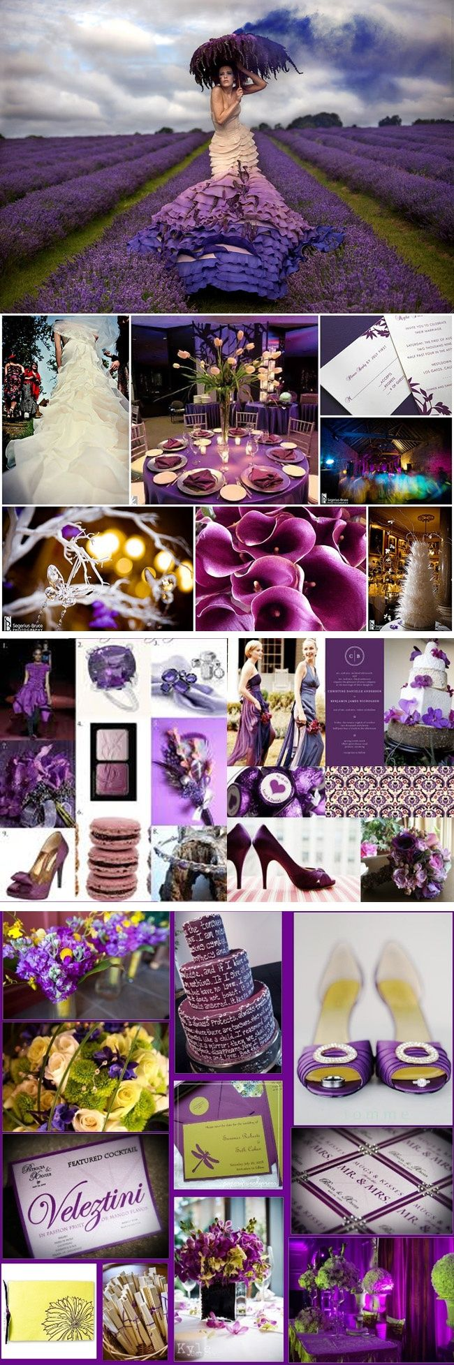 Are you planning a Purple and Teal Wedding? Weddingnewsday has tons of inspiring Purple and Teal Wedding photos showcasing the best Purple and Teal Wedding