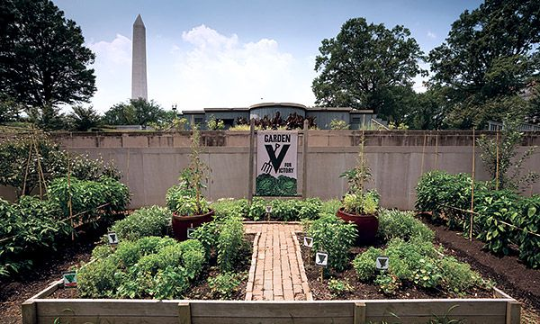 Best 25 Victory Garden Ideas On Pinterest The Homestead Victory Definition And Start Of Ww2