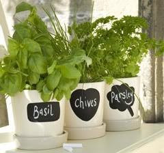 210 Best Images About Garden Ideas On Pinterest Gardens