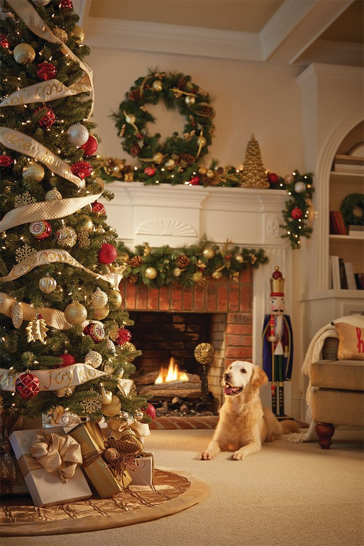 The Cranberry Frost Holiday Collection by Martha Stewart Living gives this Christmas tree a classic holiday look that never goes out of style. We have Christmas trees of all shapes and sizes, artifical and natural, to create holiday look you want (Golden Retrievers not included). Click through to see our Christmas tree options.