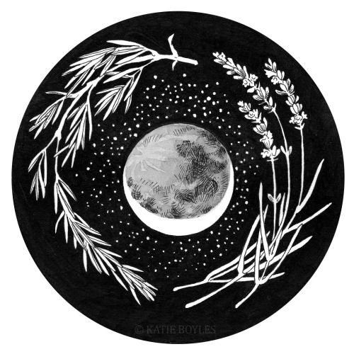 commanderspock: bones-and-things before the harvest moon ...