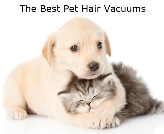 A very detailed list of the Best Pet Hair Vacuums for 2017.  Includes full size vacuums, stick vacs, handheld vacuums, as well as bagless vacuums, bagged vacuums, corded vacuums, and cordless vacuums.
