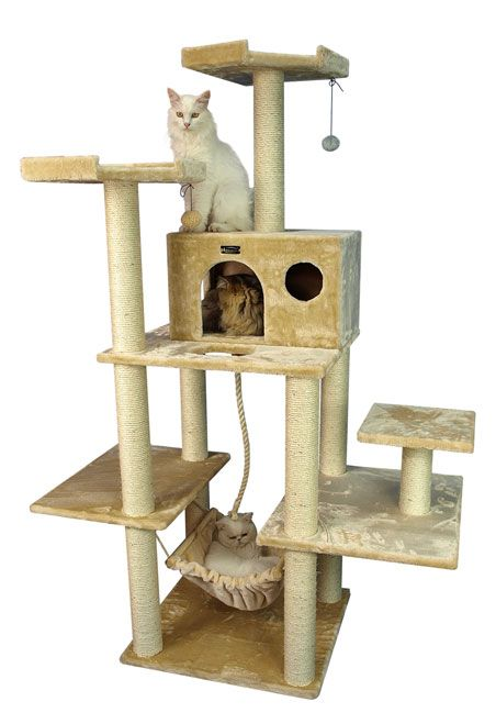complete cat gym with cat hammock - Cat Jungle Gym