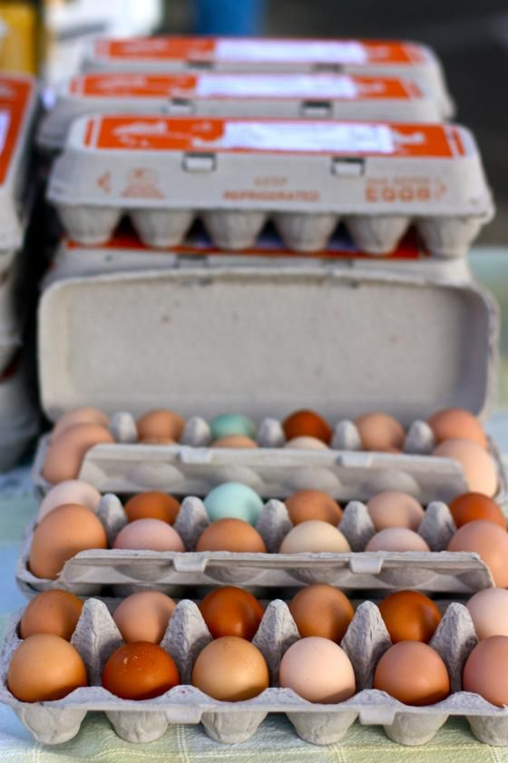 just eggs, one product, but a colorful and interesting display