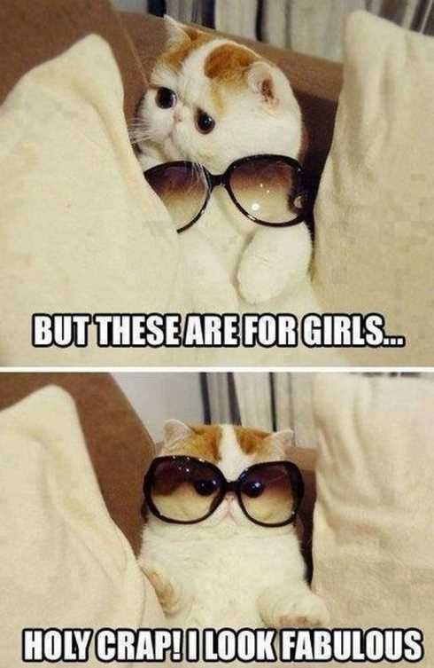 hilarious-pictures-and-memes-of-kids-dogs-and-cats-007