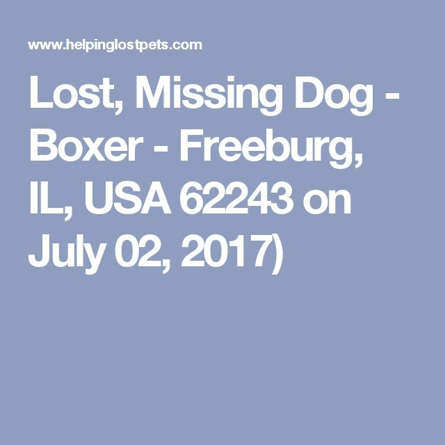 Lost, Missing Dog - Boxer - Freeburg, IL, USA 62243 on July 02, 2017)