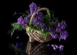 Fioletowe, Kwiaty, Bukiet, Koszyk, Odbicie