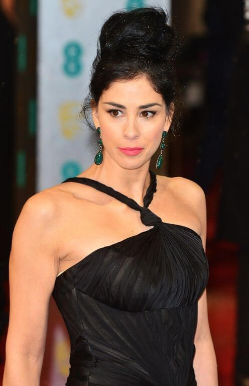 25+ best Sarah Silverman Height ideas on Pinterest | Stand up ...