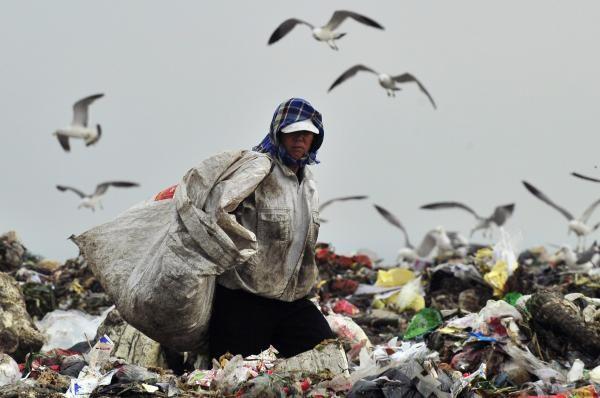 Las imágenes de la semana-Un recolector de basura busca residuos reciclables mientras las gaviotas buscan comida en un vertedero de basura en Dalian, provincia de Liaoning.-Autor:REUTERS  Junio 2012