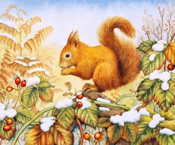 Best 25 squirrel art ideas on pinterest a squirrel how for Tattoo shops in greeley