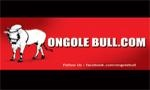 All About Ongole:: OngoleBull :: ongolebull.com