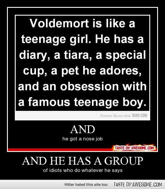 So basically Volemort is like a popular, stupid teenage girl.