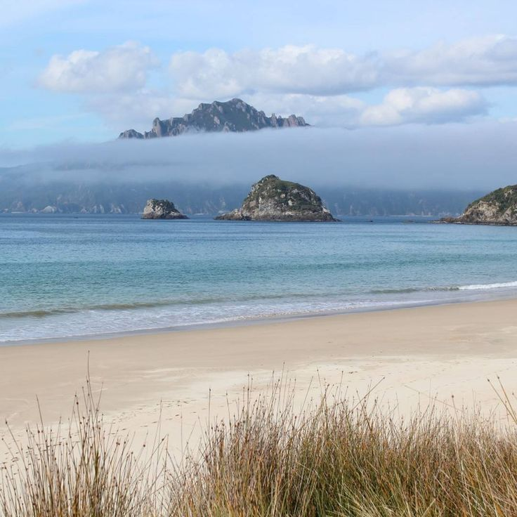 The view across to the Ruggedy Range mountains on Stewart Island, from Whenua Hou/Codfish Island. Photo: William Brockelsby