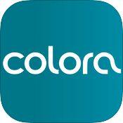Colora moodboard app for iPad