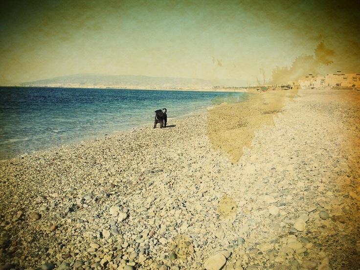 The beach & Dr. Watson