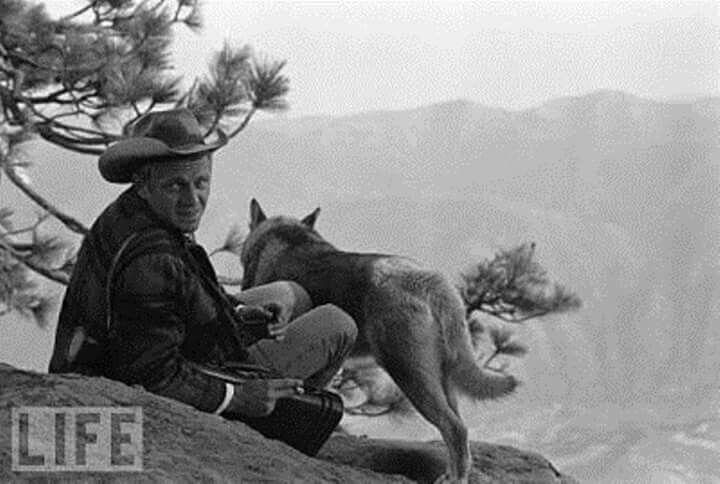 Steve Macqueen y su perro malamute