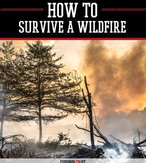 wildfire essay Wildfire has 11 ratings and 0 reviews wildfire is a verse essay it is trying to persuade us, to recognize that certain catastrophes and felicities are.
