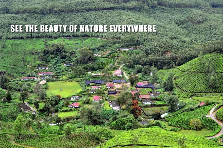 A natural scenery will definitely get inscribed in your minds when you stay with us at Munnar.Our ideal location being the reason for this.