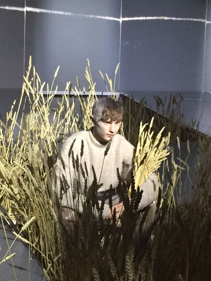 #Sefton at the #Cottweiler show #LCM