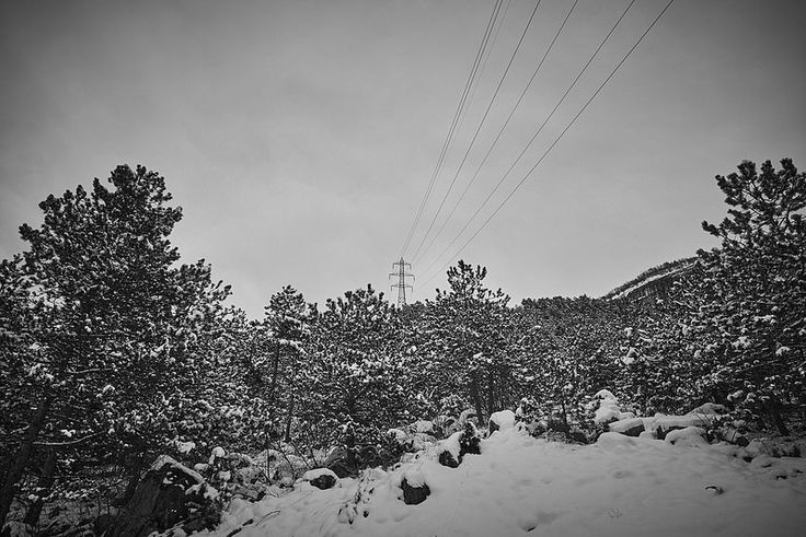 White energy. Walking in the snow. #Wabisabiphotography #Snow #Trentino #Rovereto #FujifilmX-T1 #Winter #Forest #Energy