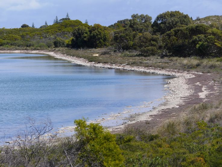 The shoreline of Lake Thetis, Cervantes, Australia showing some old…