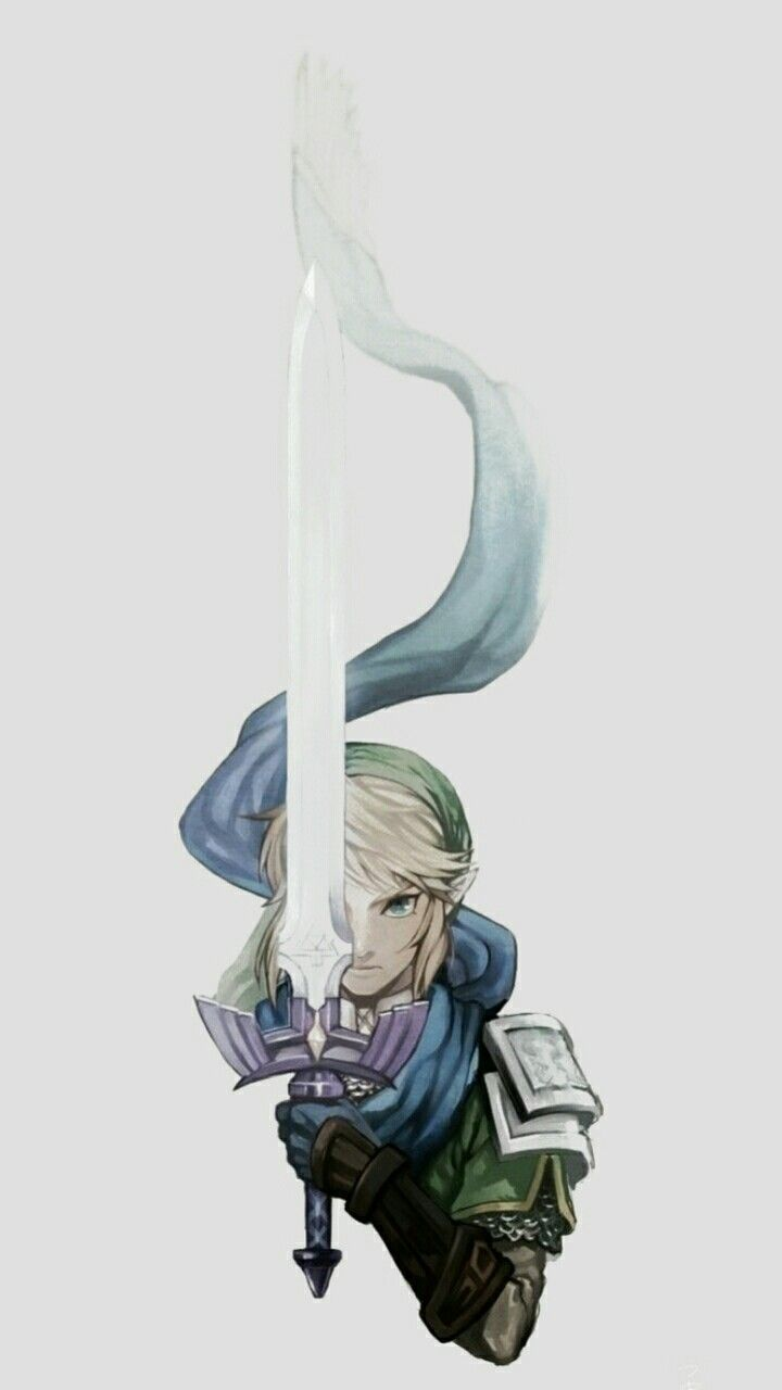 Hyrule Warriors Link The Master Sword Legend Of Zelda Zelda Art Hyrule Warriors
