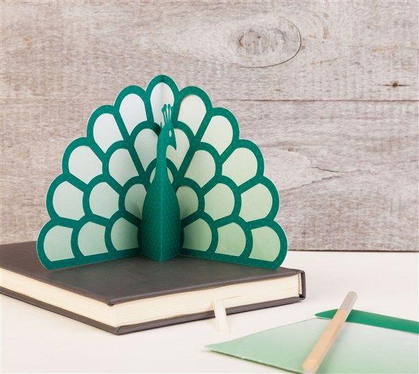 Simple Pop-up Cards Cricut cartridge -- Peacock pop-up ...