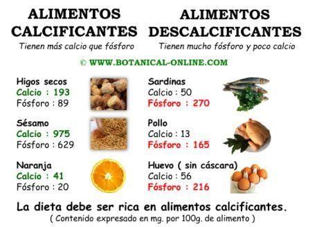 Alimentos calcificantes y descalcificantes el equilibrio calcio fosforo salud buena - Alimentos ricos en magnesio y zinc ...