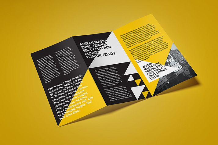 Free Flyer Mockup / Z-Fold One of the most common advertising material is tri-folded DL leaflet. That is why we created such mockup. With five shot...