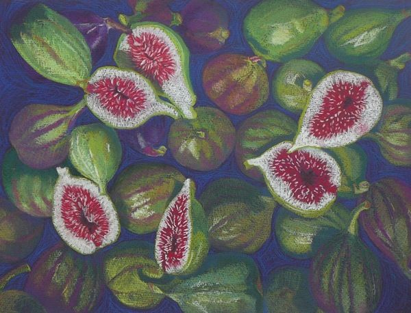Just Figs - Pastel.