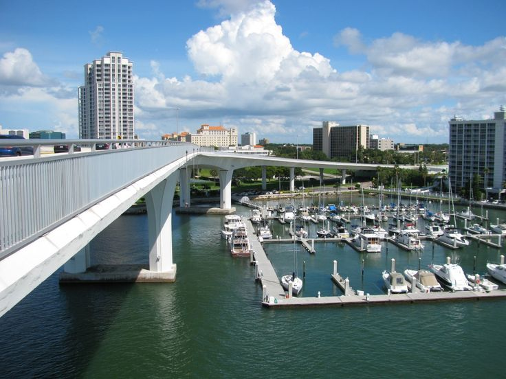 17 best images about clearwater beach marina and harbor on for Fishing clearwater beach fl