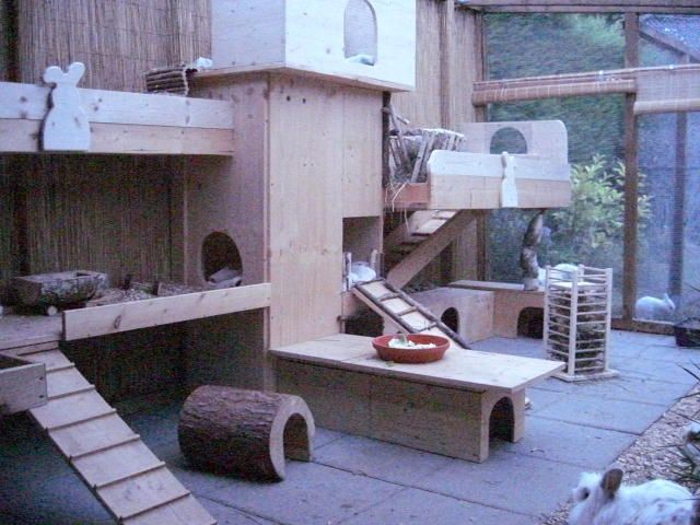 Very cool playroom setup for small pets. My chinchillas would love all the hideouts and multiple levels.