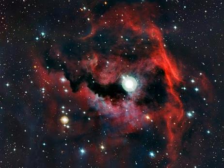 Seagull Nebula