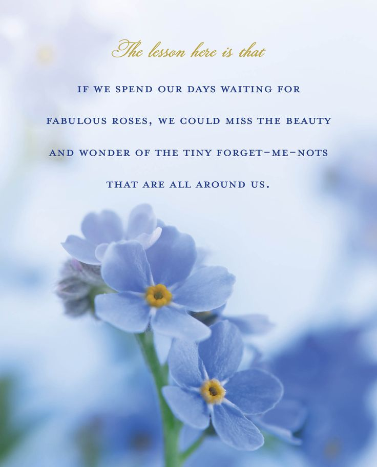 """From Dieter F. Uchtdorf's """"Forget Me Not."""""""