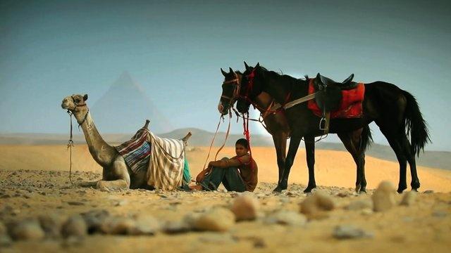 Short Documentary Video About Egypt. #shortvideo #5d #egypt #documentary