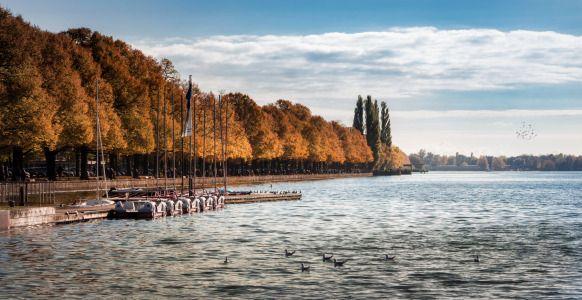 HANNOVER Maschsee Lake Hanover Germany  Herbststimmung am Maschsee. 2,4 Kilometer lang, 180 bis 530 Meter breit und nur rund zwei Meter tief. Der Maschsee, Hannovers Haussee, ist auf dem Reißbrett entstanden. Schon 1876 präsentierte der Architekt Theodor Unger der Stadt Pläne, wie den Überschwemmungen der Flüsse Leine und Ihme nach der Schneeschmelze im Harz begegnet werden könnte. Die Altstadt und die nahe gelegenen Stadtteile hatten ständig mit Überflutungen zu kämpfen.