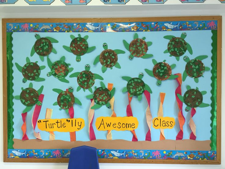 Sea Turtle themed bulletin board More